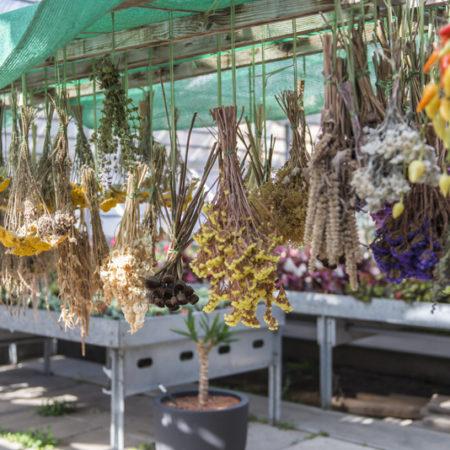 AuftragArbeit in unseren Blumenläden und Gärtnereien bieten wir Ihnen aussergewöhnliche Blumensträusse an.