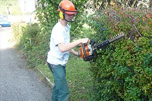 Dienstleistung Garten- & Landschaftspflege